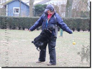 "Bild ""http://happymudi.de/allerlei/galerien/Vorschau-FOTOS-Moppel-Obedience-Training-2012/IMG2012-02-12_216_Moppel-Anette.JPG"""