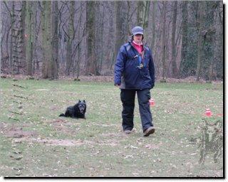 "Bild ""http://happymudi.de/allerlei/galerien/Vorschau-FOTOS-Moppel-Obedience-Training-2012/IMG2012-02-12_237_Moppel-Anette.JPG"""